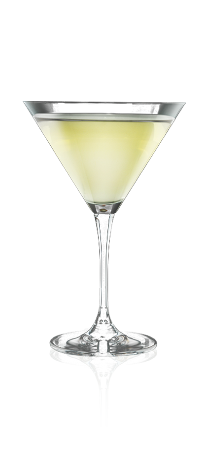 GINGER ROSE MARTINI